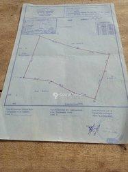 Vente Terrain agricole  4 hectares- Agou