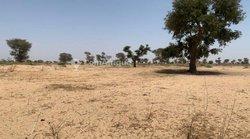 Terrain agricole  3,5 ha - Keur Franck Fall