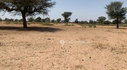 Terrain agricole  1,02 ha - Keur Franck Fall