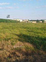 Location terrain agricoles 600 m2 - Nouveau Chu Angré