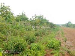 Terrain agricole - Djidja