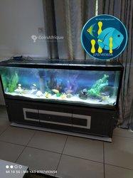 Confection aquarium