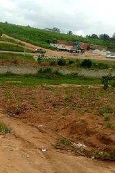 Location terrains agricoles 600 m2 - Angré Nouveau Chu
