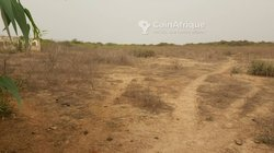 Vente Terrain agricole - Mbour