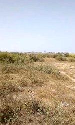 Terrains agricoles 30000 m2 - Bambilor