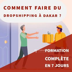 Formation E-commerce Dropshipping