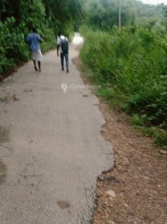 Location terrain agricole 20000 m2  - Anyama