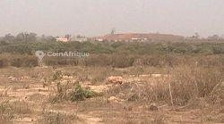 Terrain agricole de 3 hectares à Mbayar