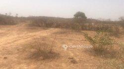 Terrain agricole 6175 m² - Mbayar
