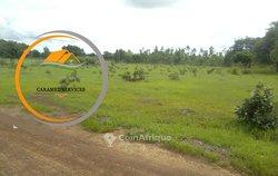 Terrain  agricole 2500m² à  Koubri