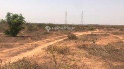 Terrains agricoles 2.83 ha - Diass