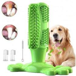 Brosse à dents chien