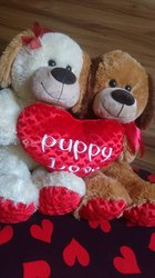 Couple peluches Puppy Love