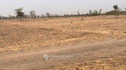 Terrain agricole de 1,11 hectare - Sindia