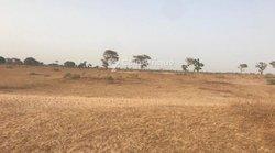 Terrain agricole 1,62 ha - Tassette