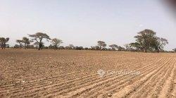 Terrain agricole 3722 m² - Tassette