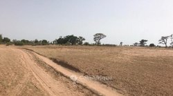 Terrain agricole 2,13 ha - Tassette
