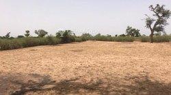Terrain agricole 2160 m² - Tassette