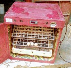 Incubateur automatique