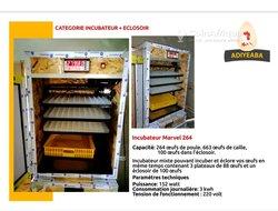 Formation en fabrication incubateur couveuse automatique