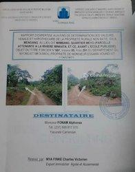 Terrains agricoles 20 ha - Yaoundé