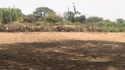 Terrain agricole  1,12 hectare - Ndiayène