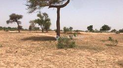 Terrains agricoles 2,8 ha - Mewane
