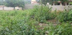 Parcelles 1000 m2 - Conakry