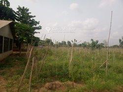 Parcelle - Ouidah