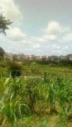Terrain agricole - Mbalmayo Ovangoul