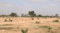 Terrain agricole 7,05 hectares - Mabour 2
