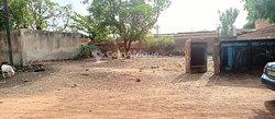 Terrain 320 m2 - Ouagadougou  cissin
