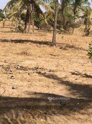 Vente Terrain Agricole 5000 Hectares - Tambacounda