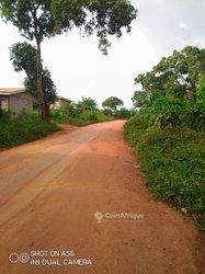 Terrains 5000 m2 - Yaoundé