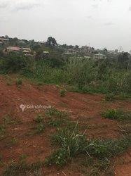 Terrains 1500 m2  - Yaoundé