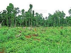 Location terrains agricoles 3000000 m2 - Dimbokro
