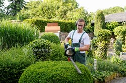 Demande d'emploi - Jardinier