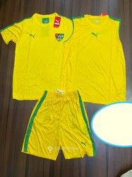 Maillot complet Epervier