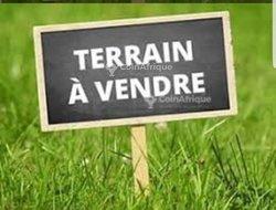Vente Terrain - Adeticopé