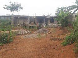 Vente Terrain - Yaoundé