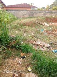 Vente Terrain - Yaoundé Nkolfoulou