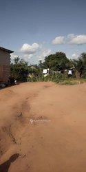 Parcelle - Ouedo