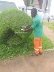 Jardinier professionnel