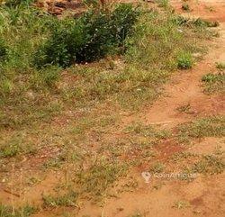 Terrains 545  m2 - Lomé
