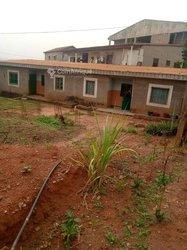 Vente studio - Yaoundé
