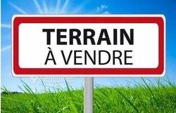 Terrain - Soa