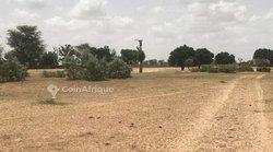 Terrain agricole 2 hectares - Tassette