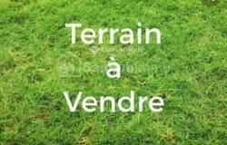 Vente Terrain - Noèpé