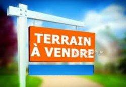 Vente Terrain - Loandjili