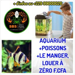 Aquarium + Poissons + nourriture